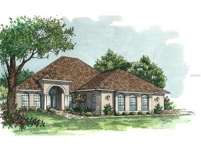Mount Dora Single Family Home For Sale: 3022 Isola Bella Boulevard