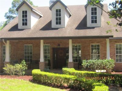 CLERMONT Single Family Home For Sale: 11412 Nellie Oaks Bend