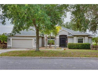 Clermont Single Family Home For Sale: 11544 Wishing Well Lane