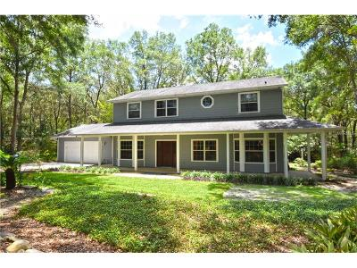 Apopka Single Family Home For Sale: 2 E Kelly Park Road