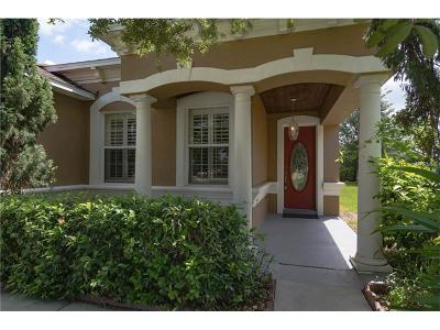 Mount Dora Single Family Home For Sale: 5040 Gandross Lane
