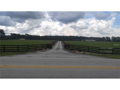 Sorrento Residential Lots & Land For Sale: 34120 County Road 437