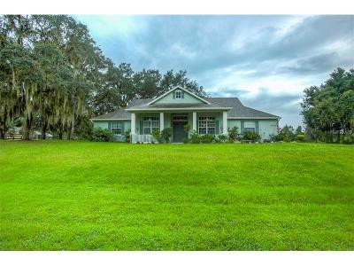 Clermont FL Single Family Home For Sale: $449,900