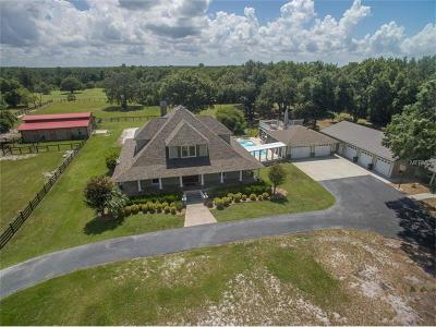 Tavares Single Family Home For Sale: 28100 Shirley Shores Road