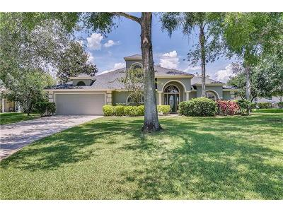 Winter Garden, Windermere, Clermont, 32819 Single Family Home For Sale: 15051 Green Valley Boulevard