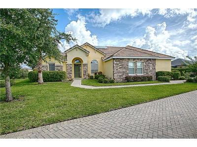 Mount Dora Single Family Home For Sale: 3045 Isola Bella Boulevard