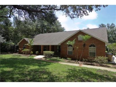 Clermont Single Family Home For Sale: 9030 Mossy Oak Lane