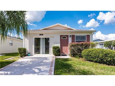 Leesburg Single Family Home For Sale: 531 Cottage Park Lane
