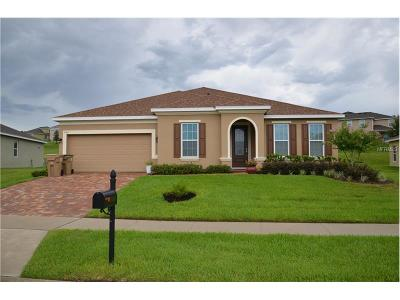 Clermont Single Family Home For Sale: 11313 Little Nellie Drive