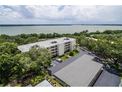 Mount Dora Condo For Sale: 501 W Old Us Highway 441 #C-404