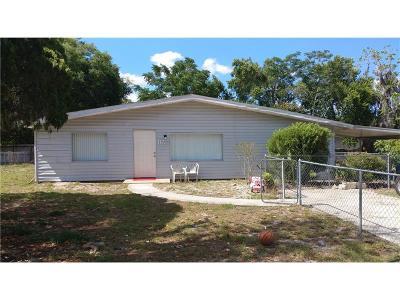 Leesburg Single Family Home For Sale: 11723 Pala Verda Avenue