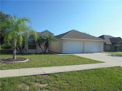 Tavares Single Family Home For Sale: 4381 Abaco Drive