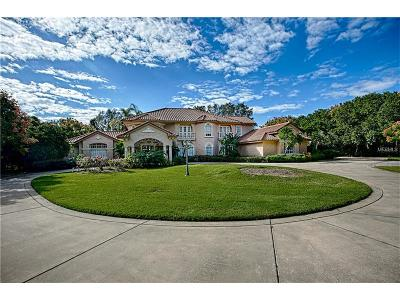 Mount Dora, Mt Dora, Mt. Dora Single Family Home For Sale: 3520 Lakeshore Drive