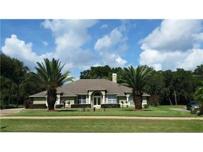 Clermont Single Family Home For Sale: 1375 Briarhaven Ln