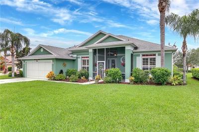 Leesburg Single Family Home For Sale: 5409 Barnwell Court