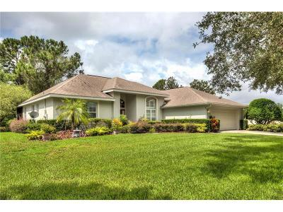 Mount Dora Single Family Home For Sale: 1500 Park Forest Boulevard