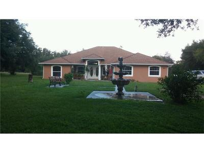 Leesburg Single Family Home For Sale: 324 Tomato Hill Road