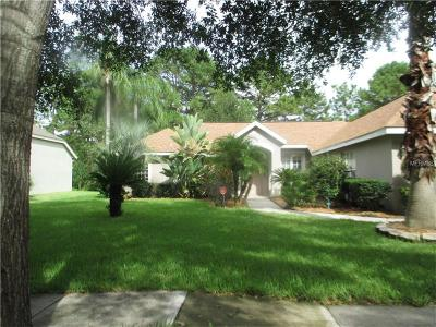 Mount Dora Single Family Home For Sale: 2100 Park Forest Boulevard
