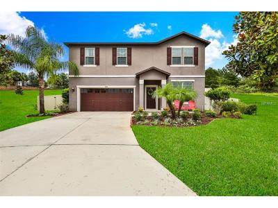 Mount Dora Single Family Home For Sale: 30144 Losino Cove