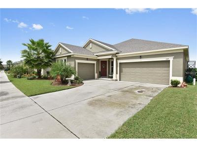 Groveland Single Family Home For Sale: 249 Blue Cypress Drive