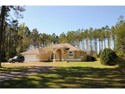 Brooksville Single Family Home For Sale: 4367 Burns Rd