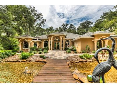Eustis Single Family Home For Sale: 35145 Marshall Road