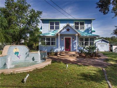 Mount Dora Single Family Home For Sale: 1515 Old Eustis Road