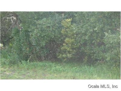 Marion County Residential Lots & Land For Sale: 00 SW 161st Street