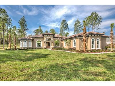 Eustis Single Family Home For Sale: 23555 Milford Drive