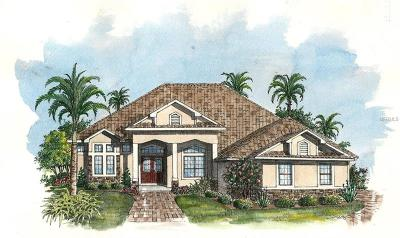 Mount Dora Single Family Home For Sale: 3053 Isola Bella Boulevard