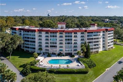 Mount Dora Condo For Sale: 601 McDonald Street #310
