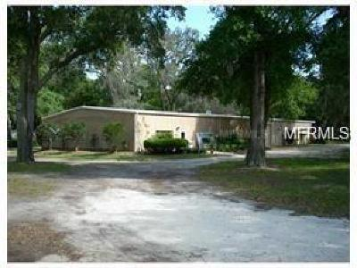 Commercial For Sale: 44650 State Road 19