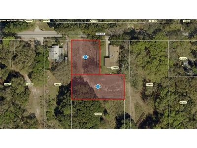mount dora Residential Lots & Land For Sale: Pine Avenue