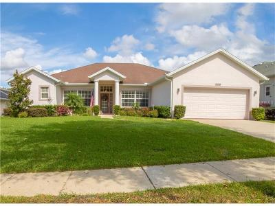 Clermont Single Family Home For Sale: 9658 Spring Lake Drive