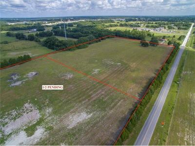 Wildwood Residential Lots & Land For Sale: E County Road 462