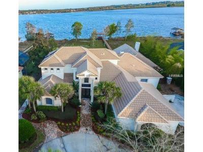 Mount Dora Single Family Home For Sale: 1020 Juliette Boulevard