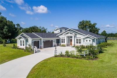 Lake County, Orange County, Osceola County, Seminole County Single Family Home For Sale: Lot E-15 Live Oak Drive
