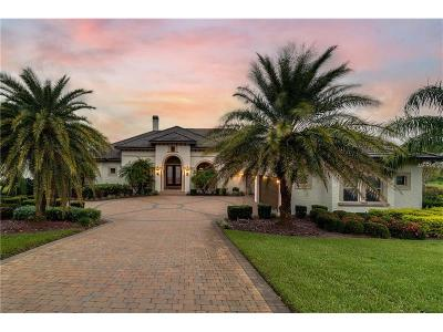 Groveland Single Family Home For Sale: 17050 Royal Palm Drive