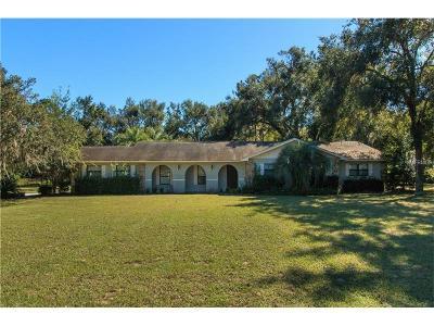 Fruitland Park Single Family Home For Sale: 707 E Hilltop Street