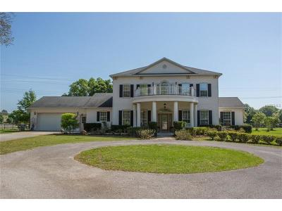 Clermont Single Family Home For Sale: 11124 Arrowtree Boulevard