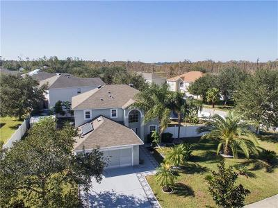 Groveland Single Family Home For Sale: 1123 Imperial Eagle Street
