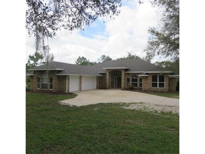 Deland Single Family Home For Sale: 1021 Saddle Hill Road