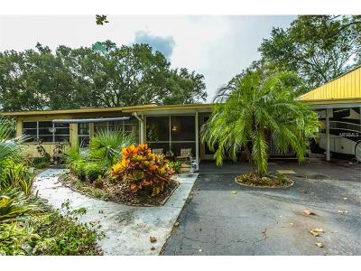 Mount Dora Single Family Home For Sale: 5230 Palm Lane