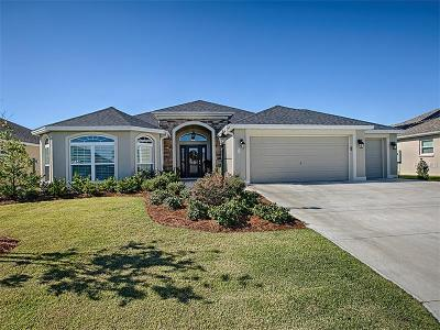 Lake County, Orange County, Osceola County, Seminole County Single Family Home For Sale: 3166 Hutcheson Way
