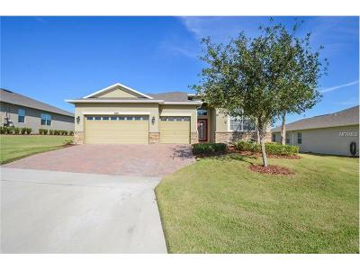 Clermont Single Family Home For Sale: 2884 Sandy Cay Street