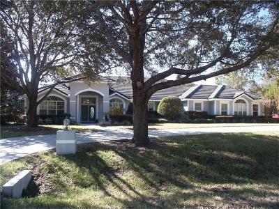 Lecanto Single Family Home For Sale: 3738 N Grayhawk Loop
