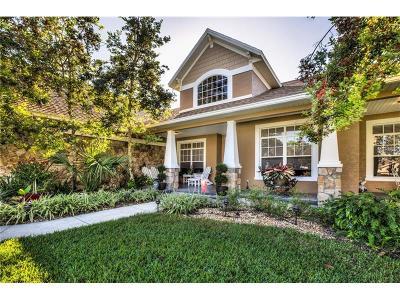 Mount Dora Single Family Home For Sale: 7612 Lake Angelina Drive