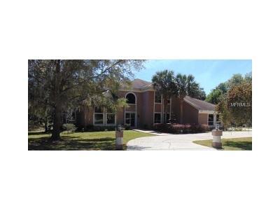 Ocala Single Family Home For Sale: 7399 12th Circle