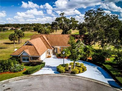 Apopka Single Family Home For Sale: 1010 Orange Grove Lane