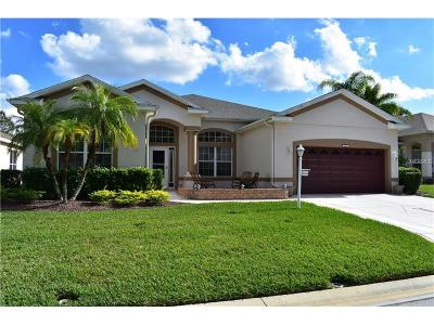 Leesburg Single Family Home For Sale: 4927 Long Meadow Drive